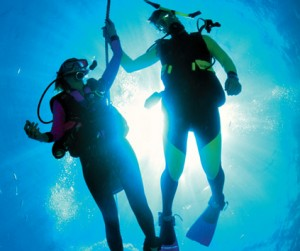 Подводный мир и доп. услуги