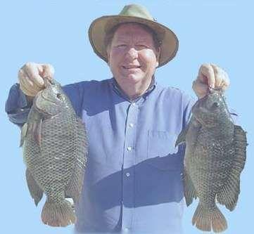 Выращивание рыбы ценных пород, выращивание рыбы в домашних условиях – бизнес идея.