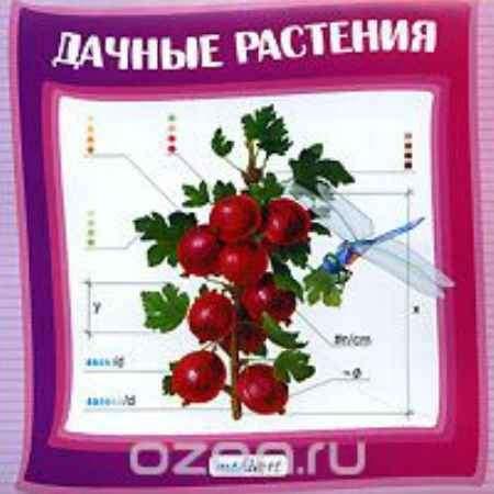 Купить Дачные растения
