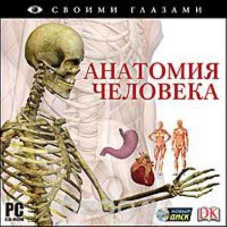 Купить Своими глазами. Анатомия человека