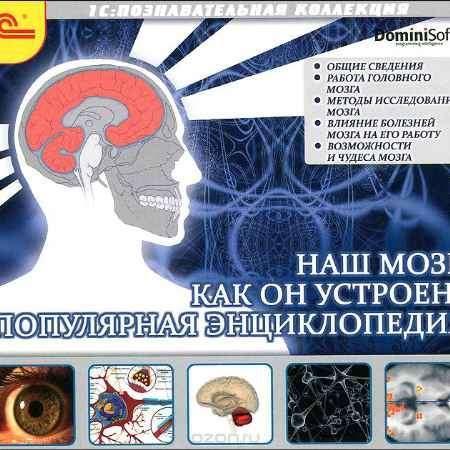 Купить Наш мозг. Как он устроен. Популярная энциклопедия