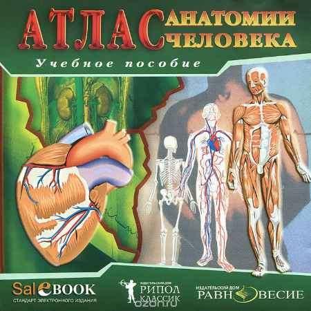 Купить Атлас анатомии человека