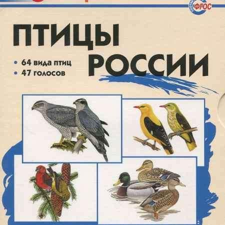 Купить Птицы России. Школьный словарик